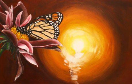 Vlinder, bloem en licht